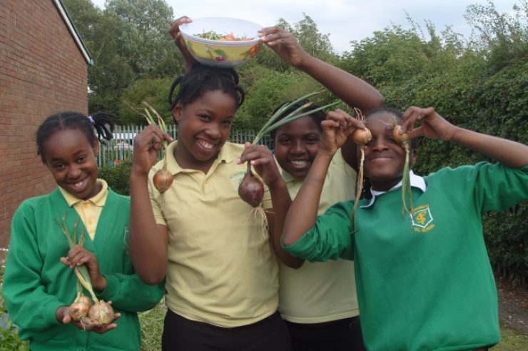 Image for Food growing and cooking could get boost on national curriculum