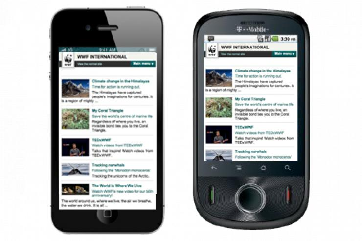 Image for Wildlife charity launches mobile phone network