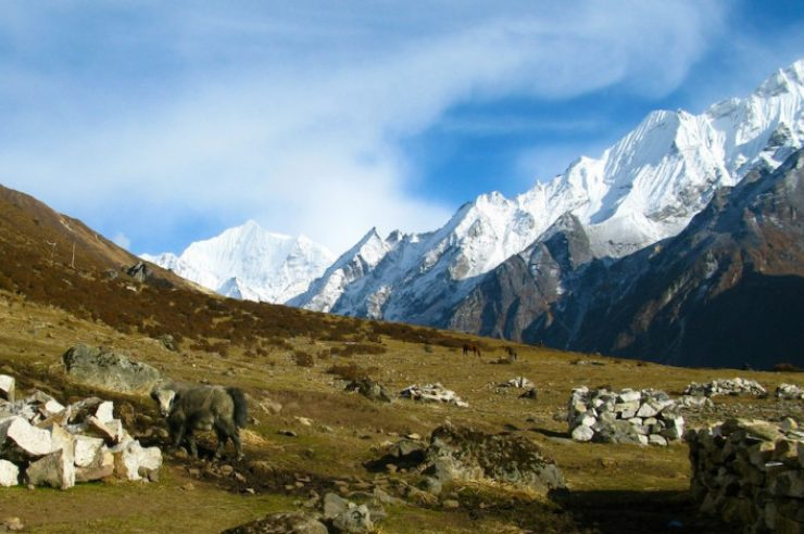 Image for China and Nepal agree to cooperate on mountain science