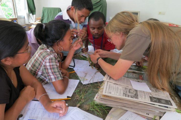 Image for UK's Kew Gardens steps up global science efforts