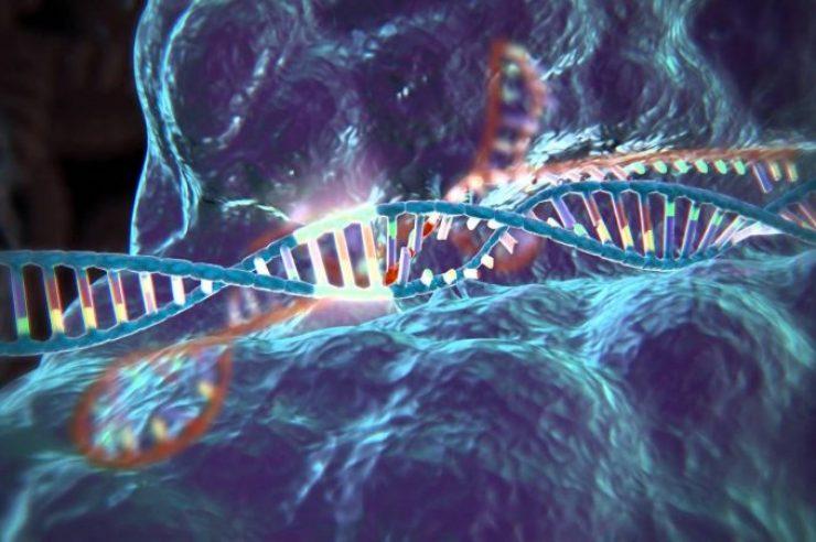 Image for Genius genes: How CRISPR is revolutionising DNA manipulation