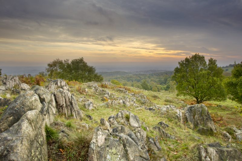 Sun rising over woodland with rocks in the foreground, Beacon Hill Country Park, October, UK