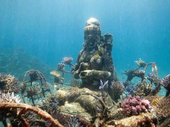 The Coral Goddess Credit Dray Van Beck