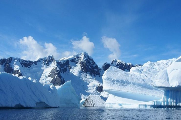 Image for World's largest protected marine zone created in Antarctica