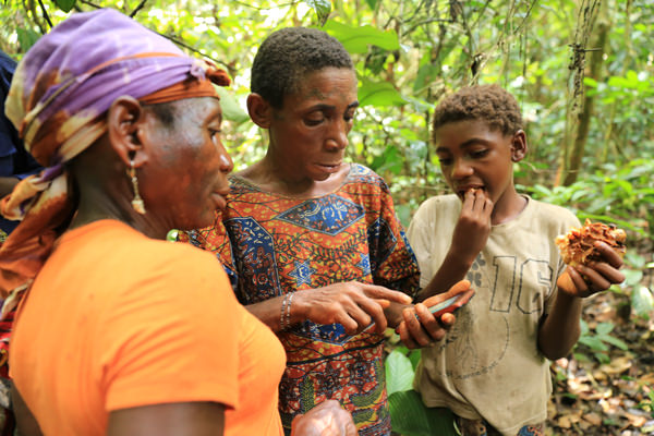 Mbendjele hunter-gatherer women in the village of Gbagbali, Republic of Congo, learn how to record the wild forest resources they depend on, as part of UCL's 'extreme citizen science'
