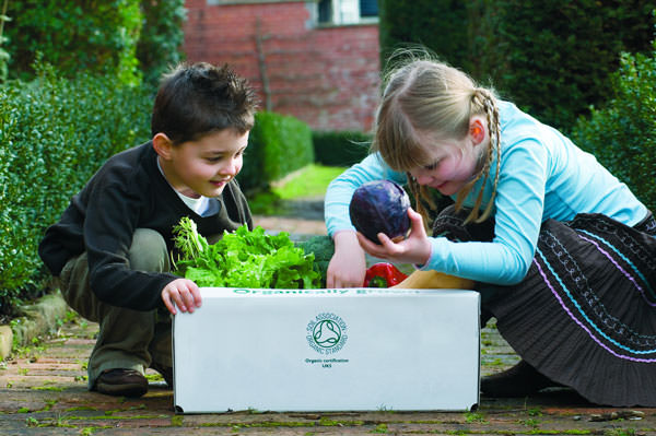 Sales of organic products through home delivery increased by 10.5 per cent in 2016. Image: Soil Association