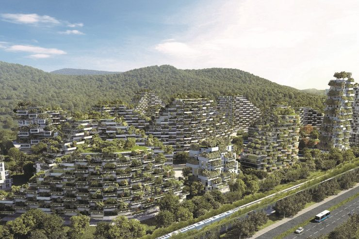Image for Plans for China's first 'city of trees' take root
