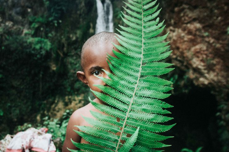 Image for How to save the rainforest: build a health centre