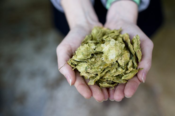 Image for Brewing good: three beer-for-good projects
