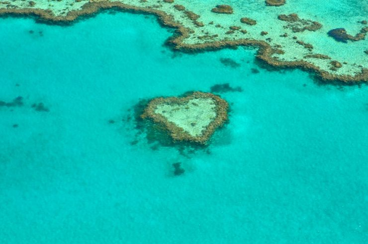 Image for Australia to invest millions in Great Barrier Reef restoration and protection