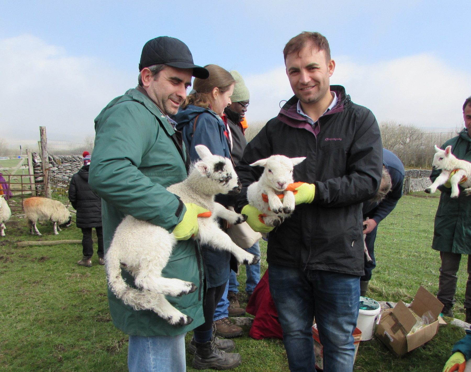 Image for Asylum seekers become shepherds in the Yorkshire Dales for a day