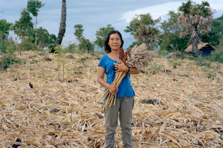 Image for Rediscovering native crops in Indonesia