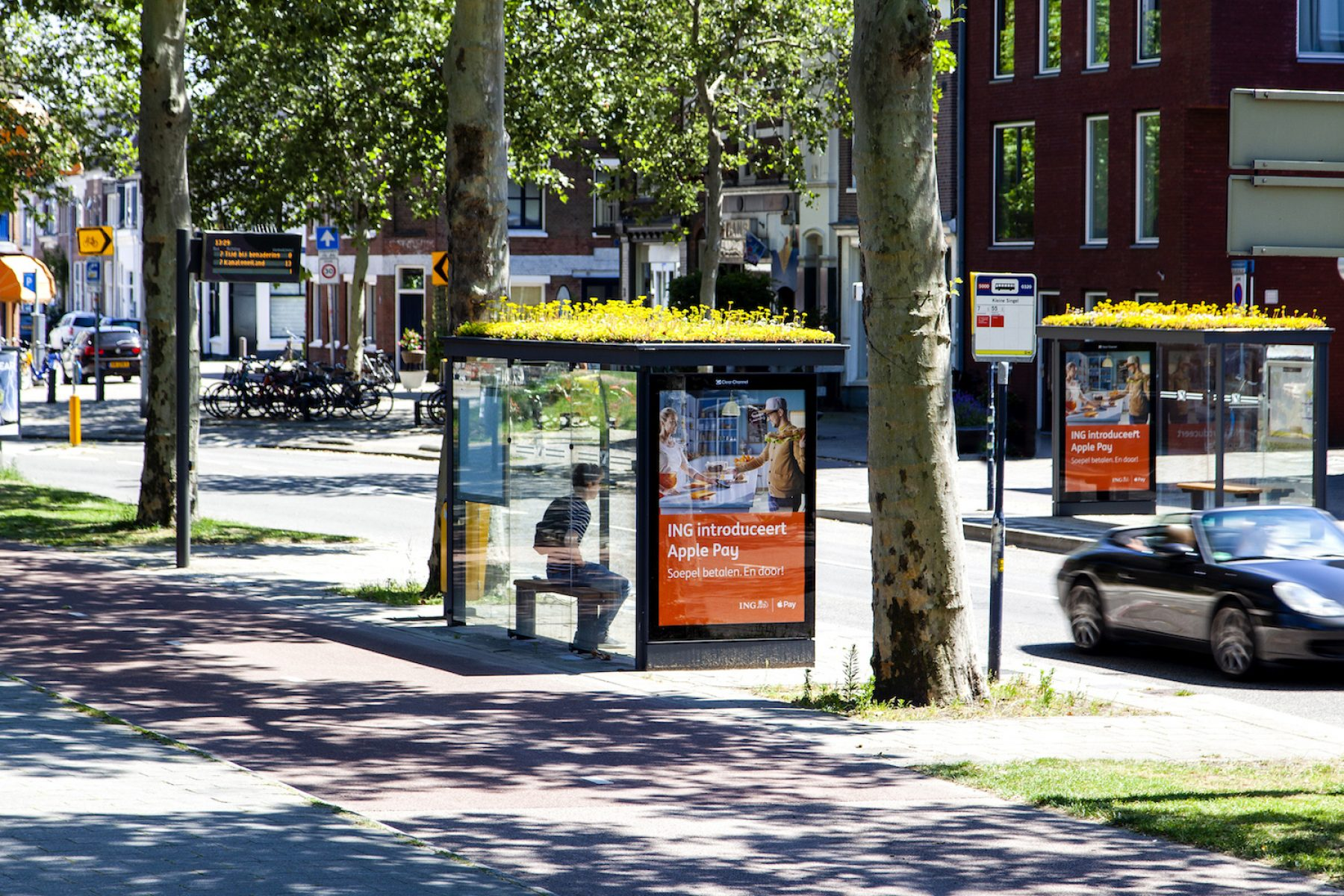 Image for Bus stops in Utrecht designed to benefit bees