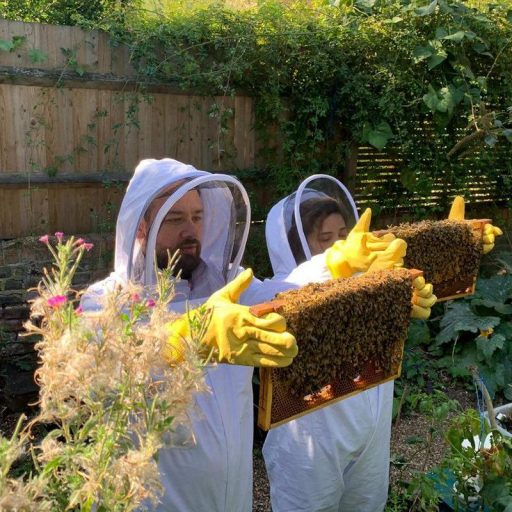Refugees tend their bees
