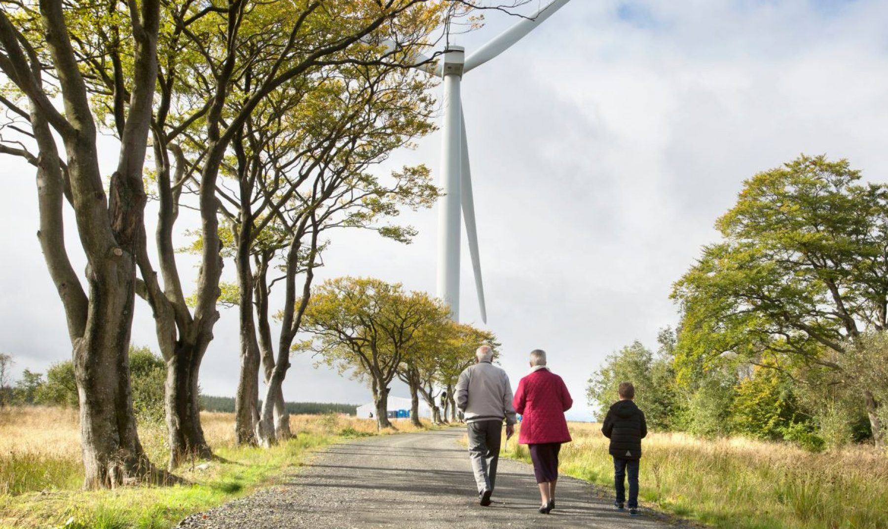 Image for Five green energy projects helping transform the UK electricity market