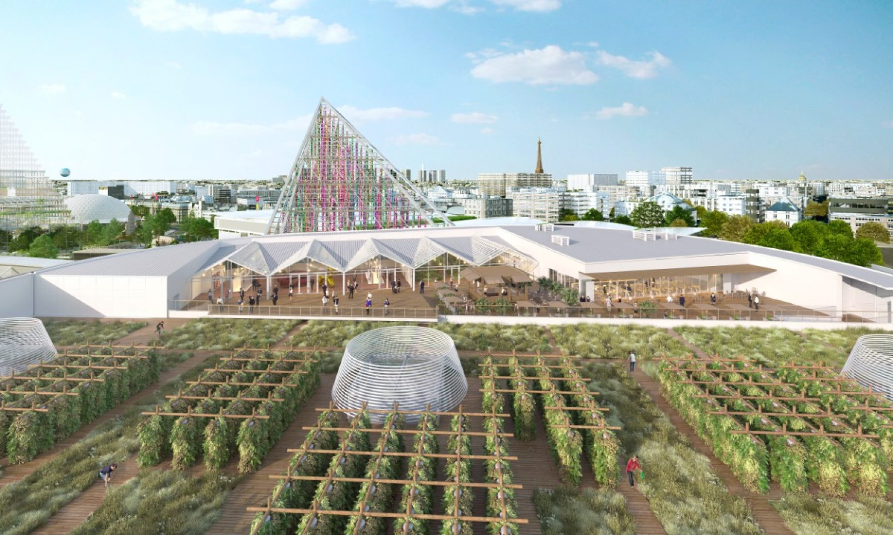 Image for Farms of the future: the Paris rooftops at the heart of an urban revolution