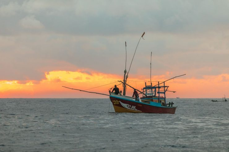 Image for Three good things: innovative projects to combat illegal fishing