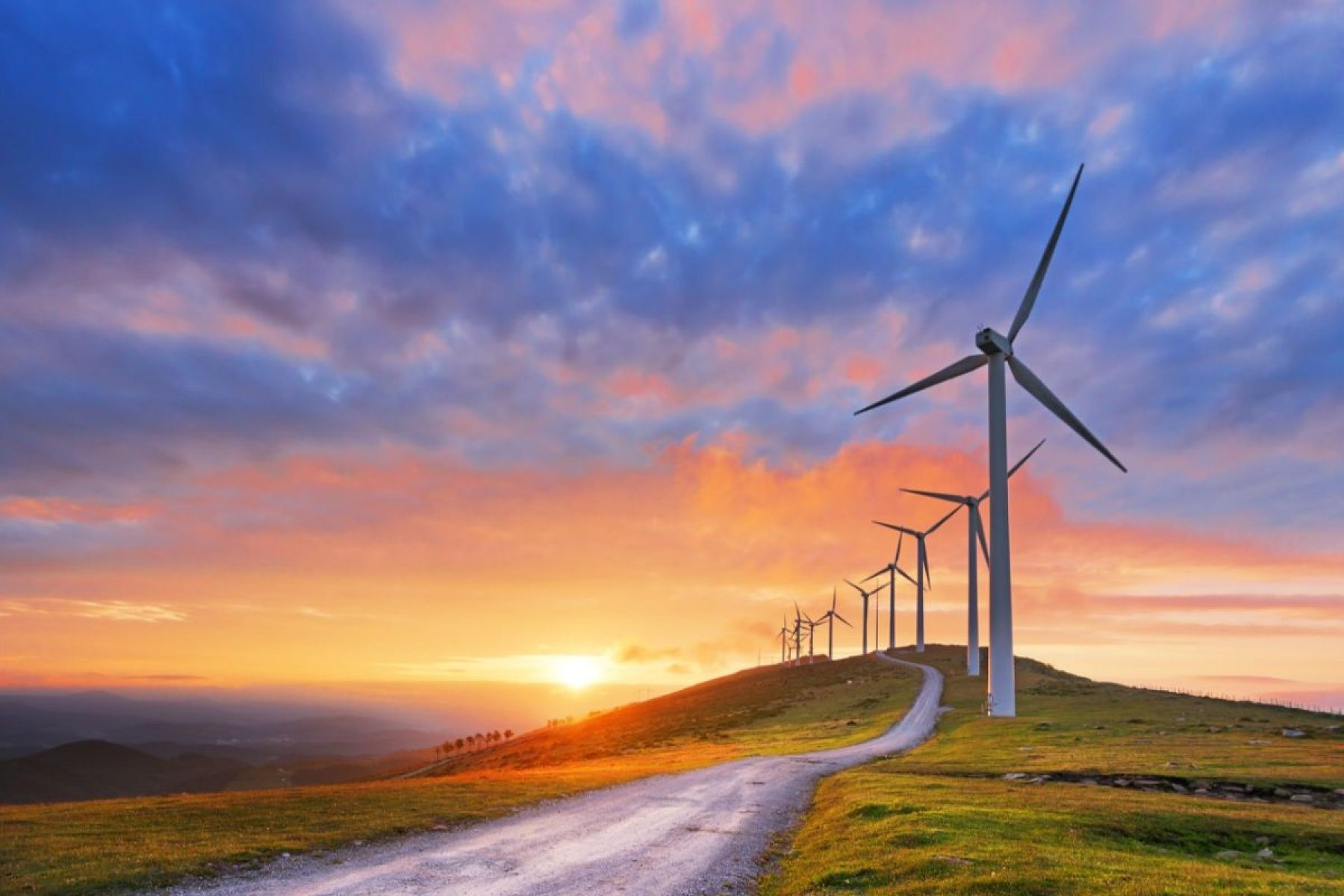 Image for Renewal: why clean energy should power the 'new normal'