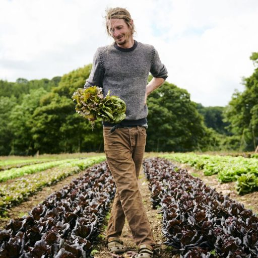 Farms to Feed Us lets people buy food direct from producers