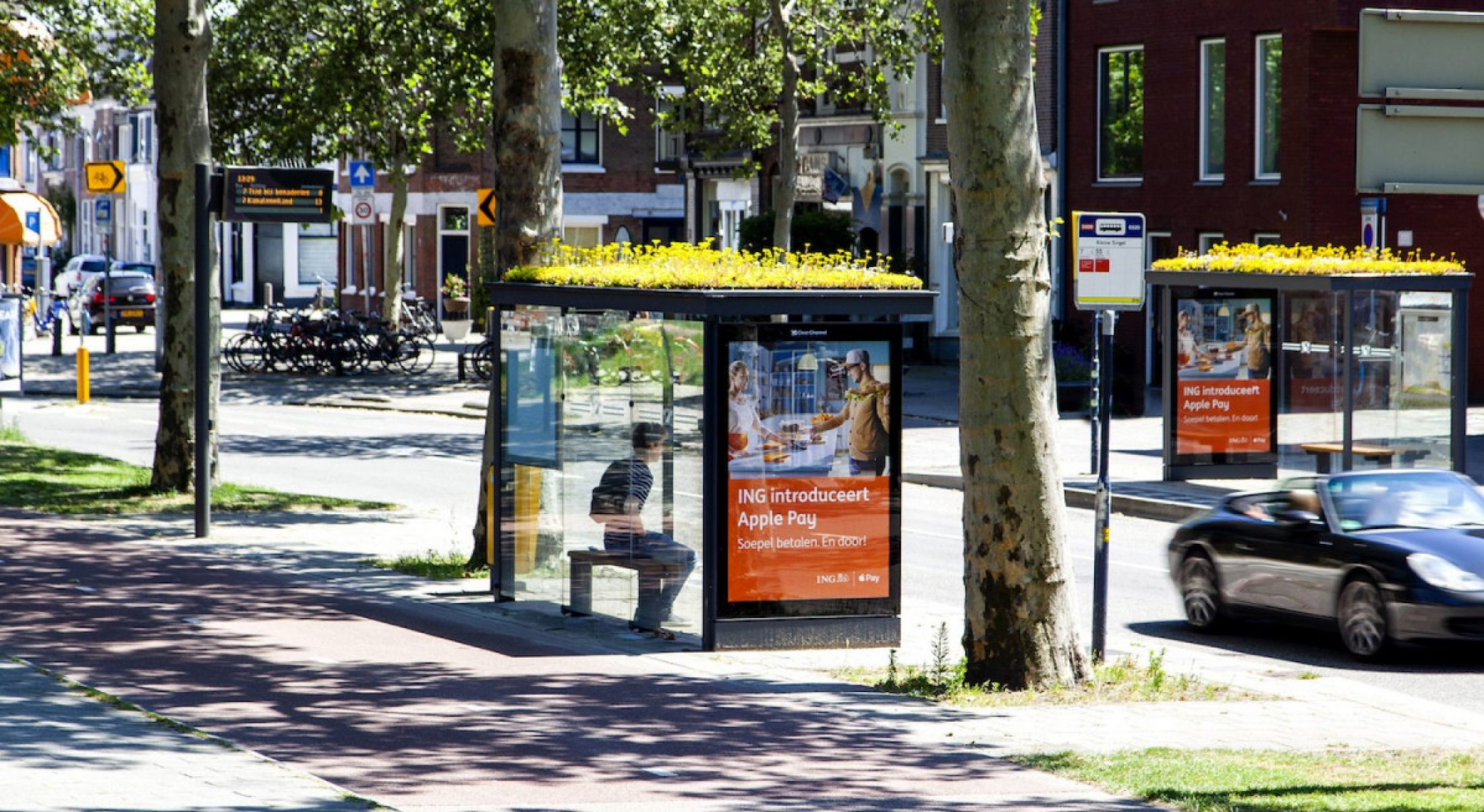 Utrecht has turned bus stop roofs into bee gardens