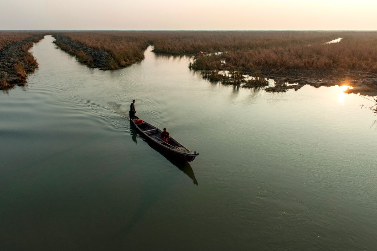 How a disaster zone in Iraq became a conservation success story - positive