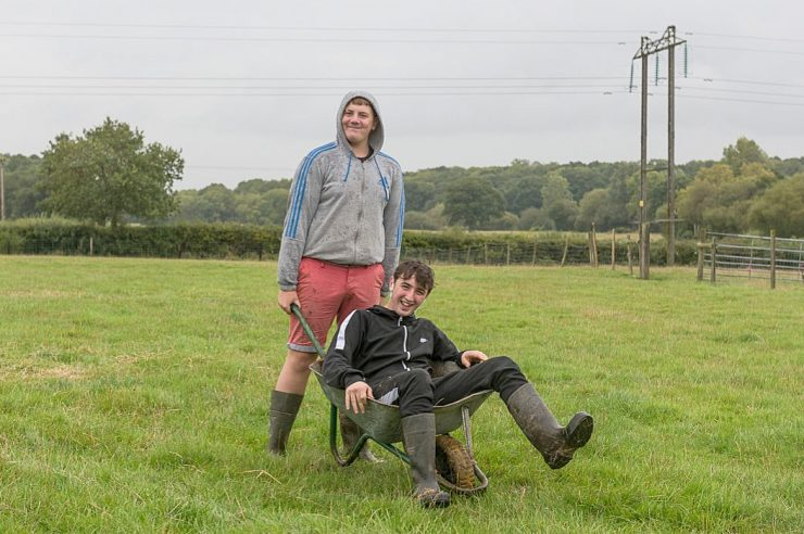 Image for 'A shining light': the care farms supporting people with mental health challenges