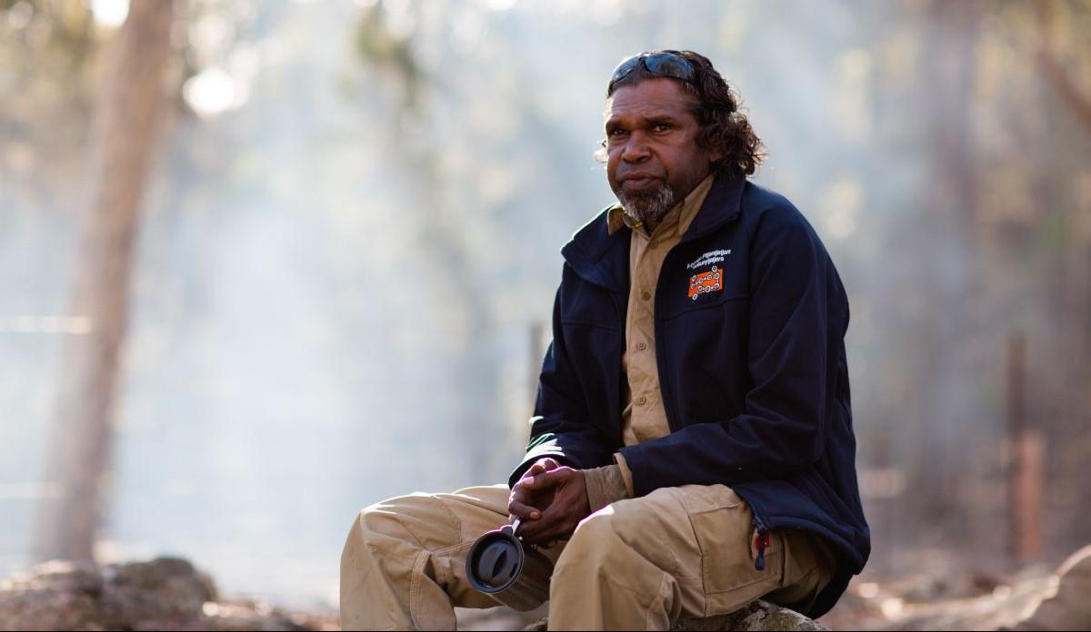 How indigenous knowledge could help prevent Australian bushfires - positive