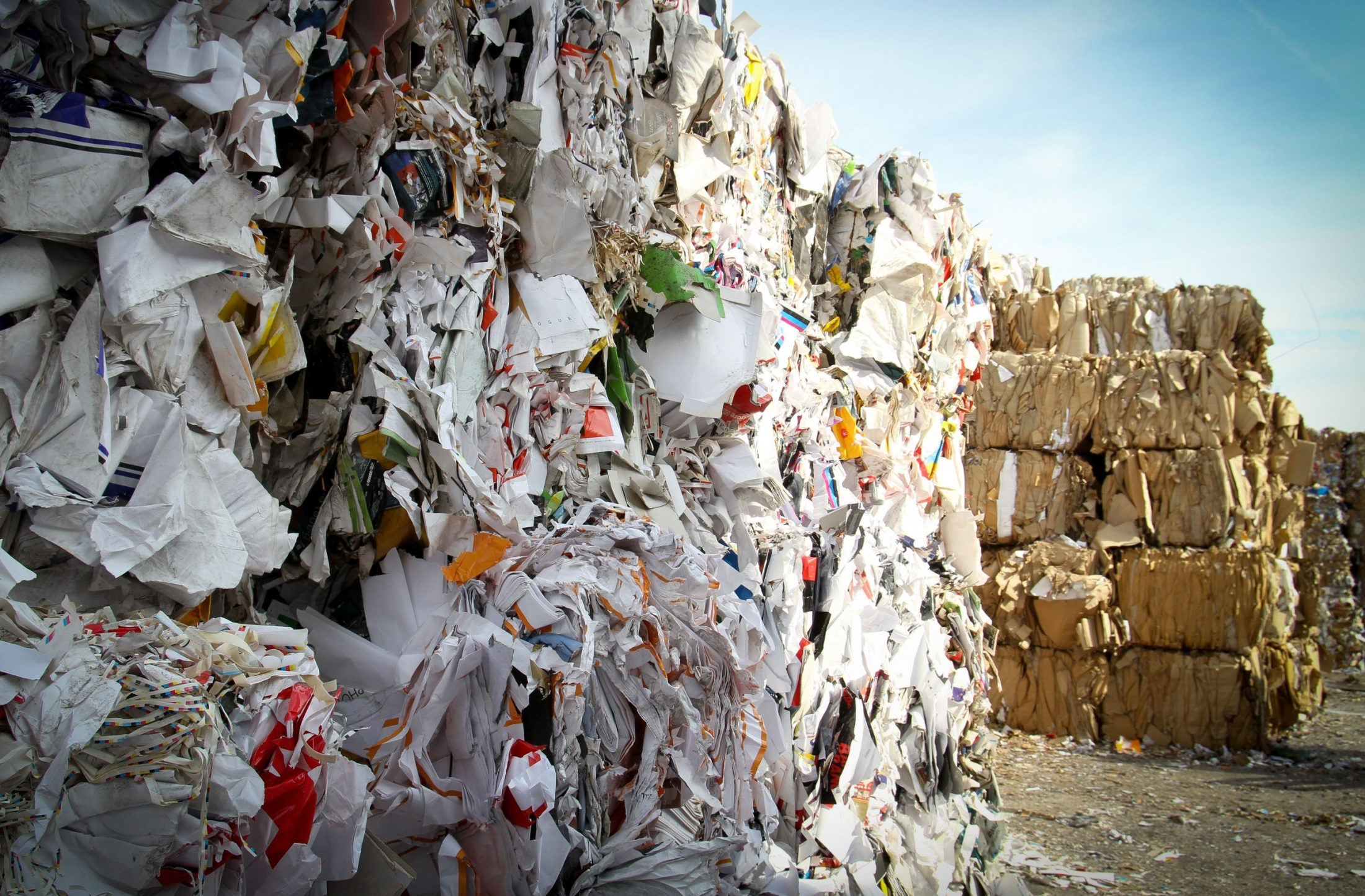 Nothing goes to waste in the circular economy, which turns trash into treasure