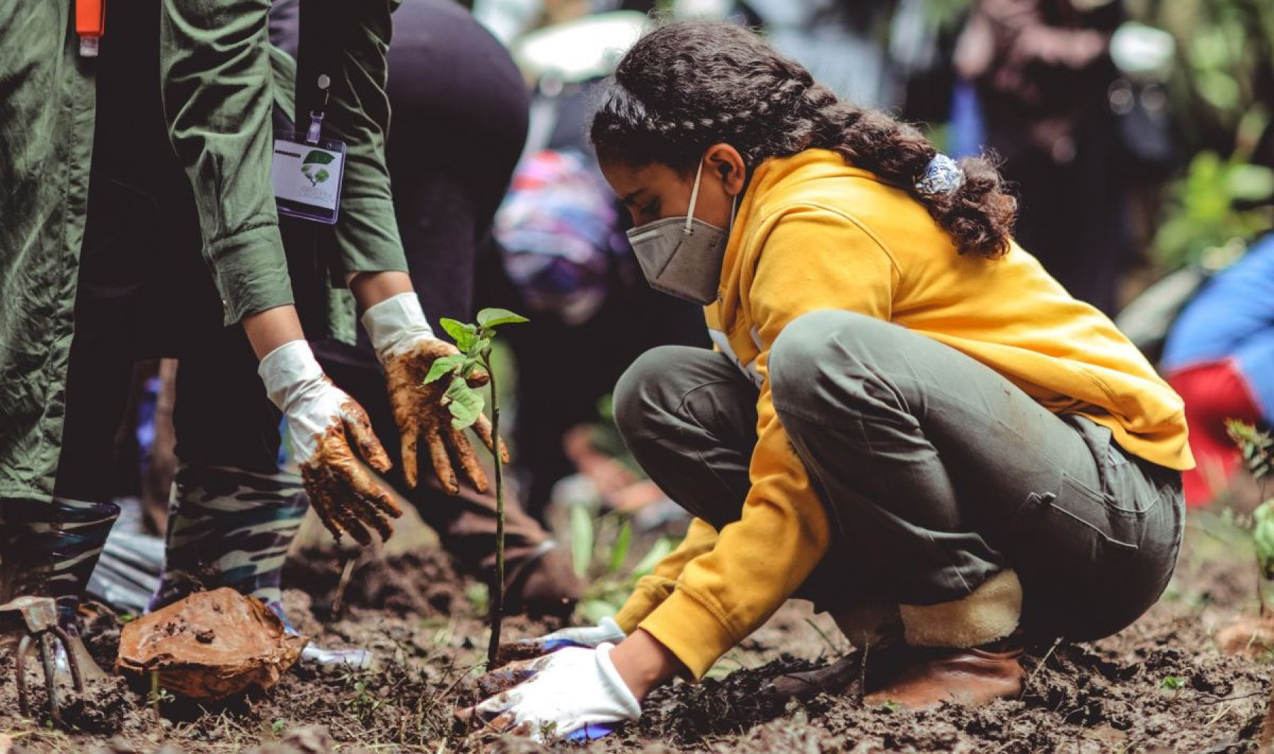 Image for How young people are tackling the climate crisis and five ways to help them