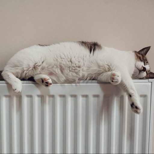 Positive news - plans for zero-emission home boilers were unveiled this week