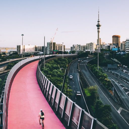 Positive news - New Zealand launched climate impact law this week