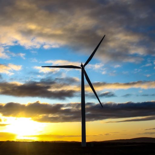 Positive news: British wind farms broke records this week