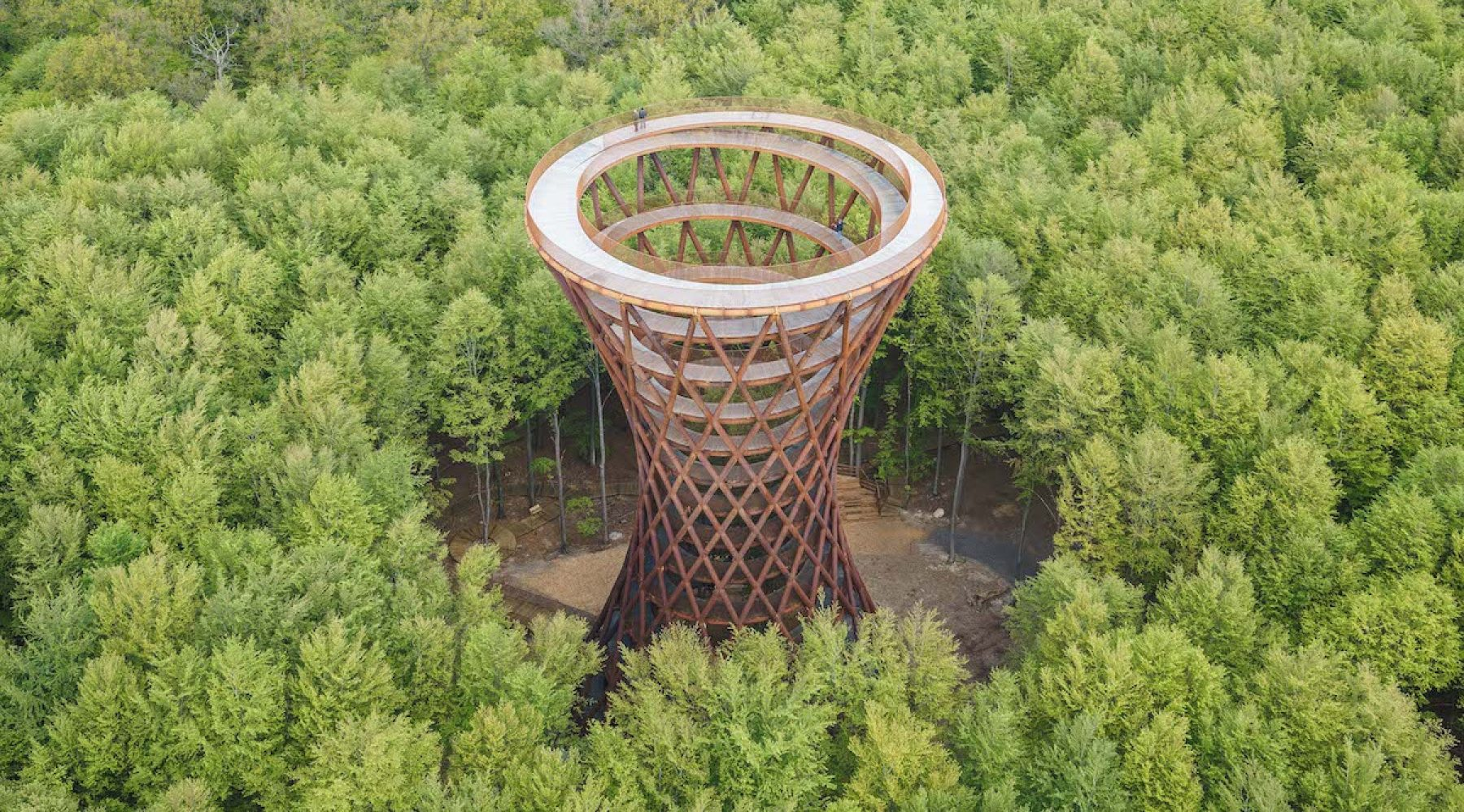 Image for Timber's time: wood is making a comeback in construction, bringing many benefits