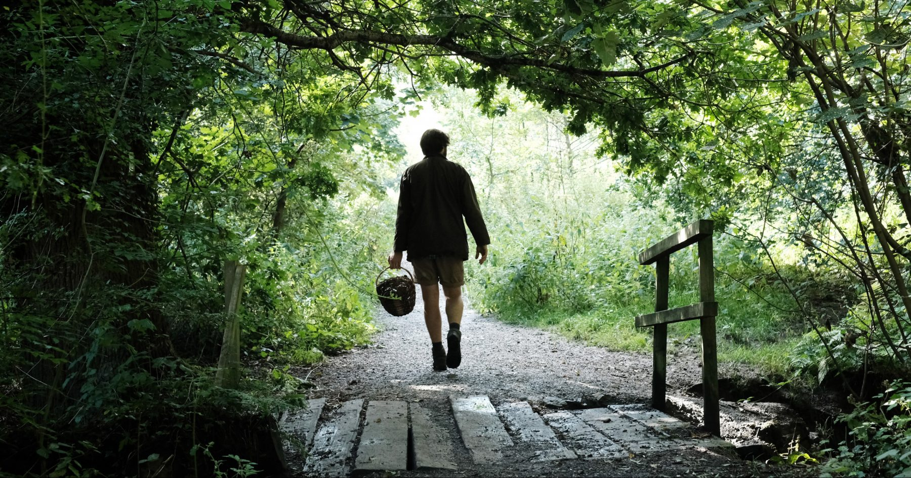 Image for Acorn coffee, anyone? The foraged goods delivered to your door