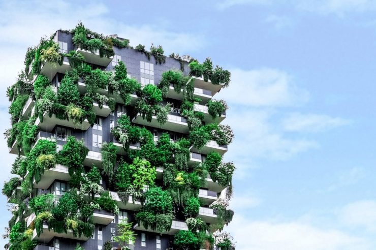 Image for The climate crisis is forcing us to change our cities for the better