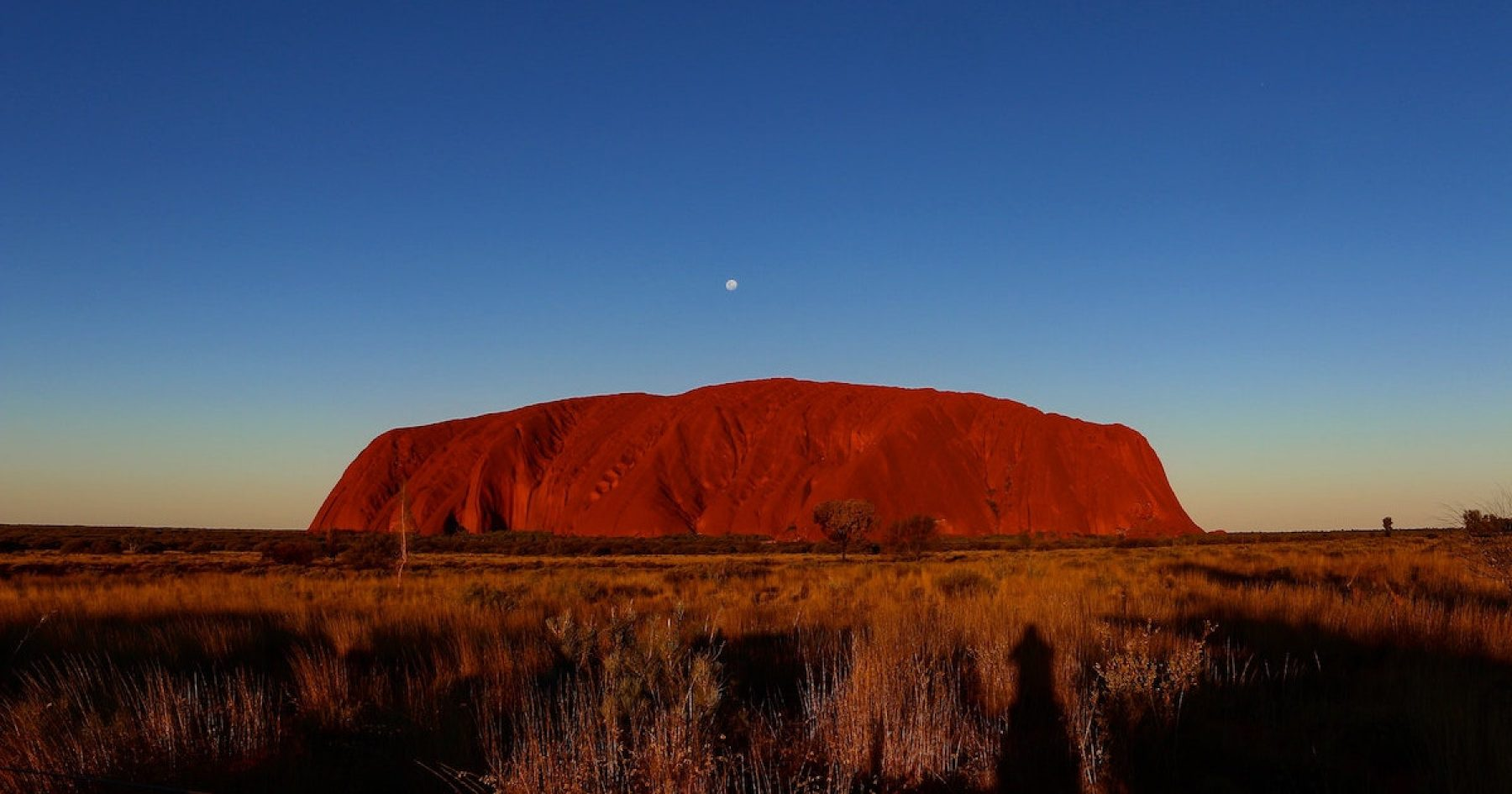 Image for What went right this week: Australia's 'healing journey', plus more positive news