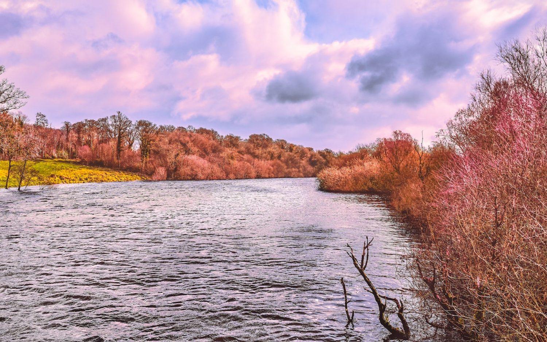 Rewilding UK waterways