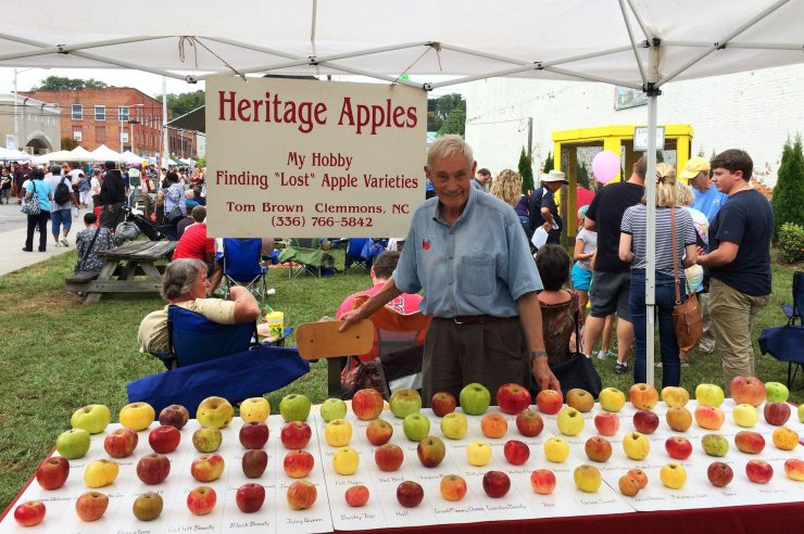 Image for 'It's a thrill to rediscover them': meet the apple hunter who saves lost varieties