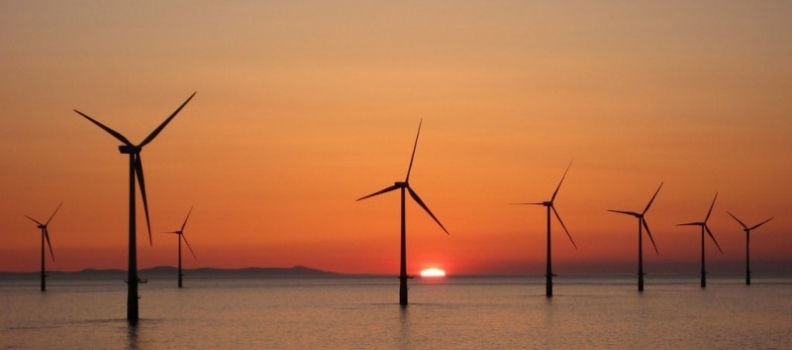 Europe's rate of offshore wind installation up by 50%