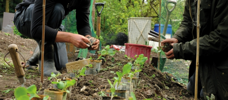 Thousands inspired by permaculture learning centres