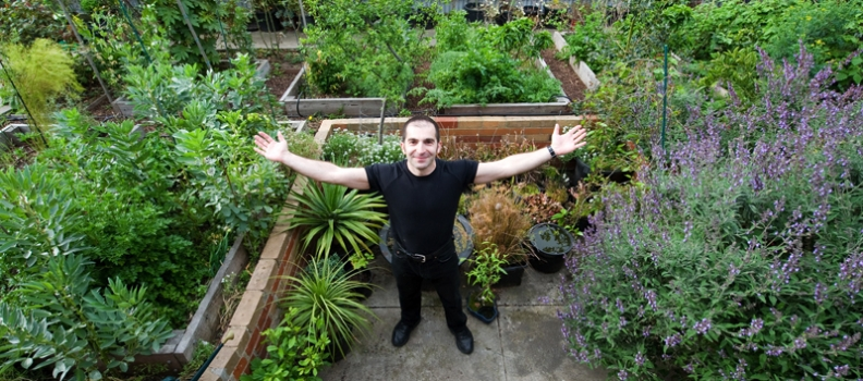New online network to make permaculture mainstream